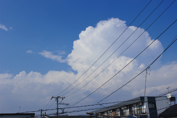 【十種雲形ギャラリー】積乱雲(せきらんうん・Cumulonimbus)