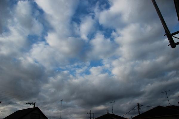 【十種雲形ギャラリー】層積雲(そうせきうん・Stratocumulus)